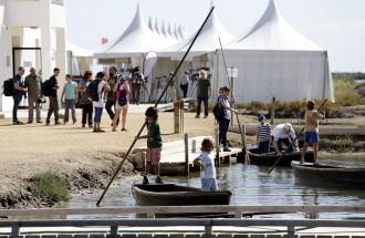 Vés a: La 3a edició del Delta Birding Festival atrau més de 2.000 persones