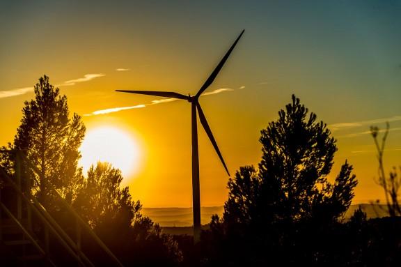 Vés a: La DO Terra Alta alça la veu contra la implantació de 3 nous parcs eòlics a la comarca