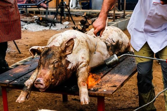 Festa del Porc i la Cervesa de Manlleu