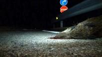 Vés a: Un solsoní mor en una topada frontal entre un cotxe i un camió a Montblanc