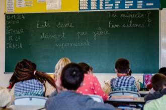 Vés a: Guia per preinscriure els fills a l'escola sense perdre els nervis