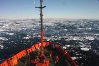 Vés a: El 3r informe sobre el canvi climàtic augura un escenari poc falaguer