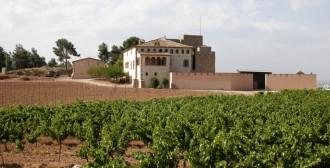Vés a: Un castell de Manresa acollirà la festa d'aniversari de la formació ultra Somatemps