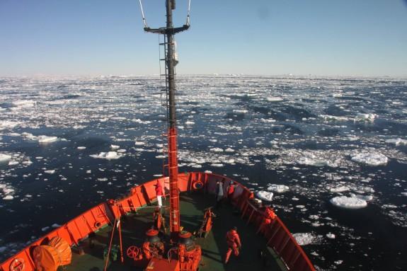Vés a: La UB se'n va a l'Antàrtida a estudiar l'impacte del canvi climàtic
