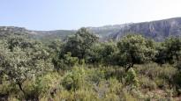 Vés a: La temperatura al Pirineu augmenta un 30% més que la mitjana mundial