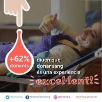 Vés a: Excel·lent participació a la recollida de sang i plasma