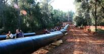 Vés a: 544 euros de multa per als 7 activistes antiMAT que es van atrinxerar en un bosc de Sant Hilari Sacalm