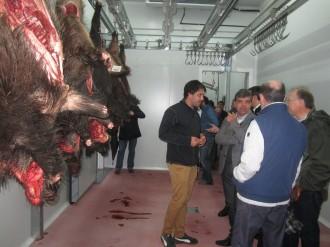 Vés a: Inaugurat el primer centre de recepció de caça de senglar a Montseny, al Vallès Oriental