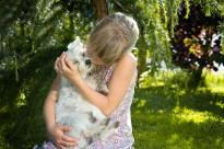 Els consells dels veterinaris per mitigar la por de les mascotes als petards