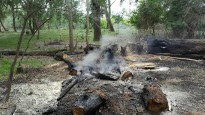 Vés a: Prohibit fer foc al bosc a partir d'aquest dimecres