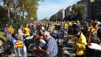 Vés a: Més de 1.200 participants consoliden Les Comes com l'escenari 4x4 més actiu d'Europa