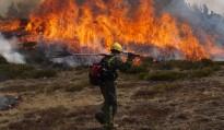 Vés a: Les cremes controlades permeten millorar les pastures al Pirineu