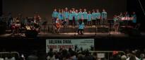 Vés a: L'Àtic amb Cançons per canviar el Món aconsegueix 908,38 euros