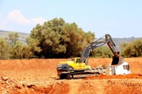 Vés a: Cemex defensa que preserva les oliveres en l'explotació d'Ulldecona