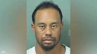 Vés a: Tiger Woods, detingut per conduir sota els efectes de l'alcohol