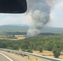 Incendi de vegetació agrícola a Olius