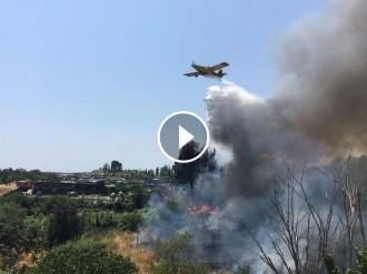Vés a: VÍDEO Un incendi crema mitja hectàrea d'una zona boscosa a tocar de la C-58, a Sabadell