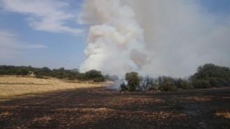 Vés a: MAPA Protecció Civil demana col·laboració ciutadana davant la persistència del risc d'incendi