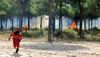 Vés a: Un incendi descontrolat a Andalusia obliga a desallotjar 2.000 persones