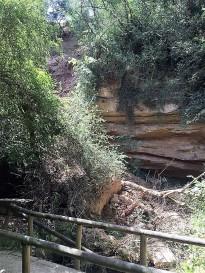 Dilluns comencen els treballs de recuperació de l'espai de la font de la Mina