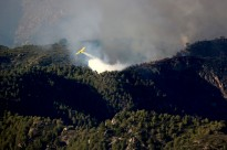 Vés a: L'Ajuntament de Sitges realitza tasques prevenció de foc a les urbanitzacions