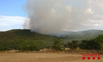 Un incendi forestal i agrícola afecta un perímetre d'unes 25 hectàrees a Biosca