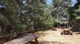 Vés a: Nou itinerari forestal pel «silvetum» de Fontmartina, al Parc Natural del Montseny