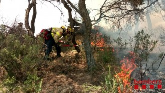 Vés a: Un foc crema 430 metres quadrats de massa forestal a La Pobla de Massaluca, a la Terra Alta