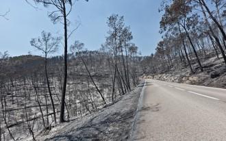 Vés a: Cinc anys dels devastadors incendis de l'Empordà: quatre morts i cap judici