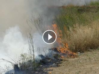 Vés a: VÍDEOS I FOTOS Un incendi crema sis hectàrees entre la Canonja i Bonavista