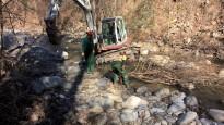 Vés a: Finalitzen els treballs d'eliminació de flora invasora als rius Freser i Rigart