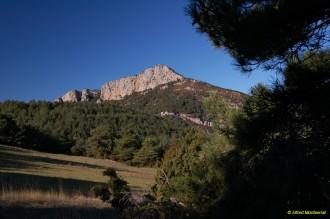 La III Caminada de Cambrils descobrirà els paisatges del Cogulló del Turp