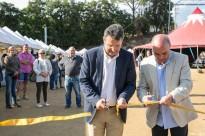 Vés a: Riells i Viabrea celebra Ecovita, la primera fira mediambiental del Montseny