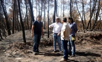 Vés a: El Bages concentra el 72% del total de la superfície cremada aquest estiu a la demarcació de Barcelona