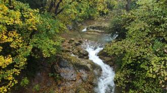 Vés a: L'ACA impulsa la recuperació de les riberes dels rius de conques internes