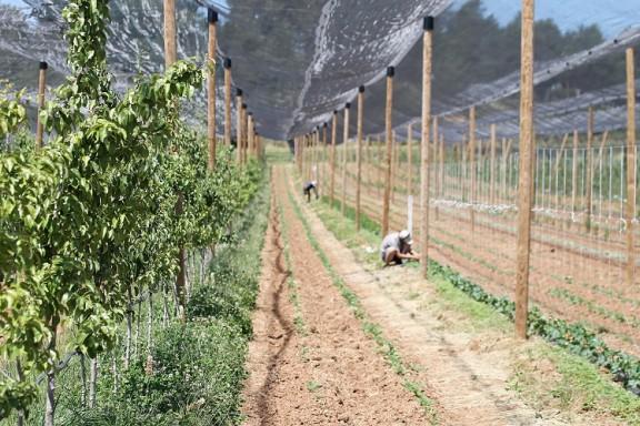 Biolord impulsa una campanya per reivindicar els valors de la pagesia de muntanya