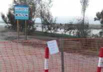 Vés a: Set municipis del delta de l'Ebre s'unixen per netejar l'entorn natural
