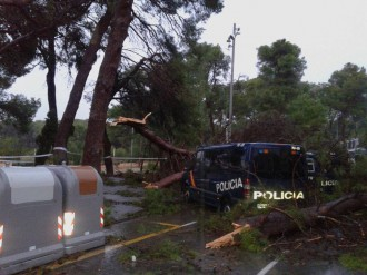 Vés a: El temporal, contra la policia espanyola: uns arbres cauen sobre els seus vehicles