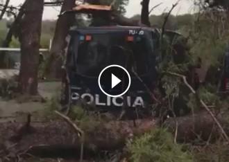 Vés a: VÍDEO «La tempesta Puigdemont» i els arbres caiguts sobre les furgonetes de la policia