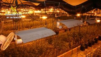 Vés a: La Guàrdia Civil intervé 3,3 tones d'haixix i 5.800 plantes de marihuana a Llinars del Vallès