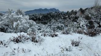 Vés a: Torna l'hivern més fred amb neu en cotes baixes