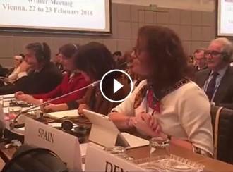Vés a: VÍDEO Així denuncia ERC a Europa la vulneració de drets i la repressió de l'Estat
