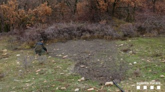 Vés a: Denuncien una granja del Pallars Jussà per abocar purins a una zona forestal
