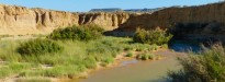 Vés a: Proposen una nova tipologia dels rius temporals per a garantir-ne la conservació