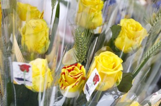 Vés a: Els floristes confirmen que la venda de roses se situa entorn als set milions