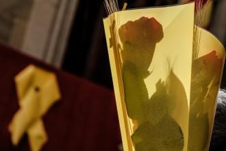 Vés a: Sant Jordi venç el drac de l'excepcionalitat