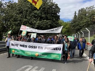 Vés a: Unió de Pagesos es manifesta a Pau contra la presència de l'ós al Pirineu
