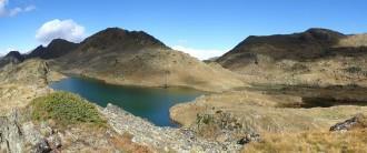 Vés a: El barb roig amenaça els prats submergits dels estanys pirinencs