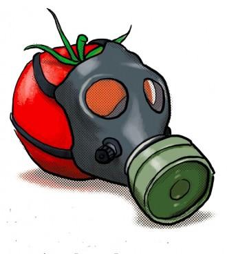 Vés a: Augmenta el nombre de pesticides disruptors endocrins en els aliments