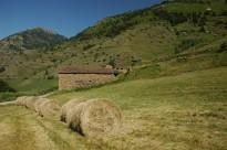 Vés a: La CUP i Ipcena denuncien els interessos miners al Parc Natural de l'Alt Pirineu